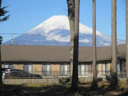 元旦、富士山